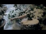 Mercedes спасенный рождественский гусь